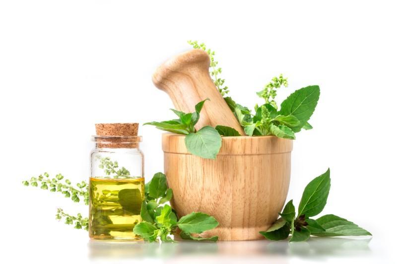 traitement par les plantes